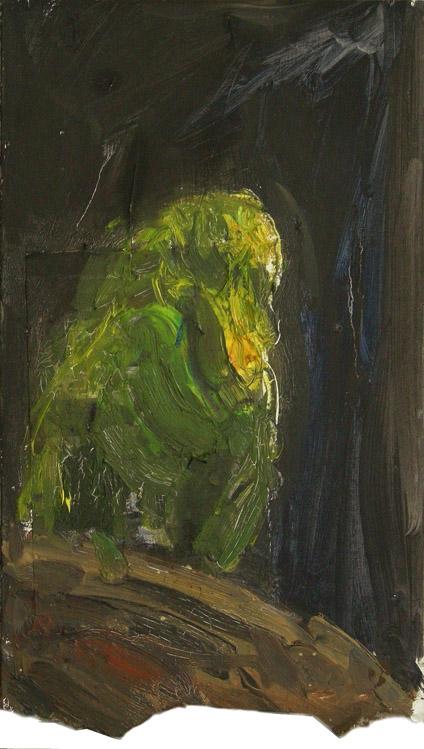 Wellensittich, 2011 Öl auf Karton, 20x34cm